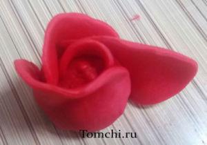 Tomchi-11